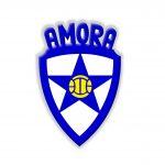 Celebração de Protocolo com o Amora Futebol Clube